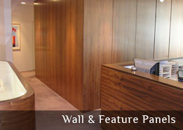 Wall and feature panels